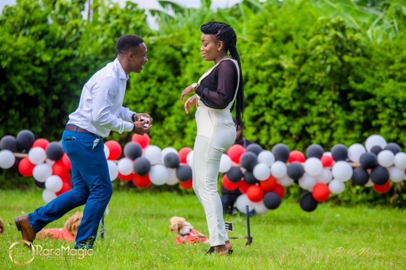 Ifeoluwapo proposes to olabanke with adorable puppies